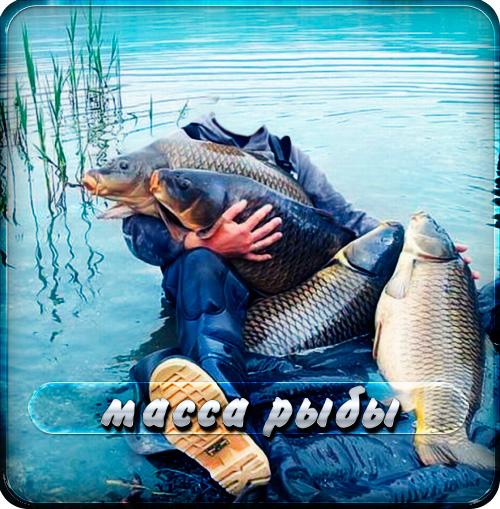 шаблоны для фотошопа мужские рыбацкие