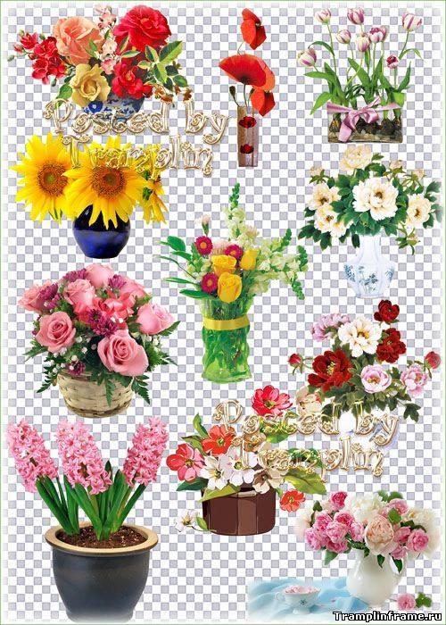 ... фон - Все для Фотошоп - Рамки для фото: tramplinframe.ucoz.ru/publ/6-1-0-7364